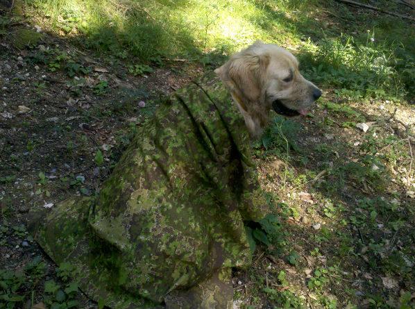 HydeDefinition – PenCott Camouflage Patterns