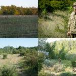 Field Test: Semi-Arid Camouflage patterns: Badlands vs Camogrom vs Highlander