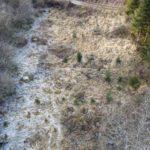 Eyes in the Sky – Field Test: PHANTOMLEAF WASP II Z2